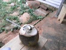 エクセルマクロ達人養成塾塾長ブログ-蜂蜜とラムを入れて、さっそく一杯♪