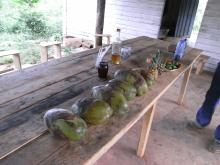 エクセルマクロ達人養成塾塾長ブログ-ココナッツ等々並び、よさげな雰囲気。